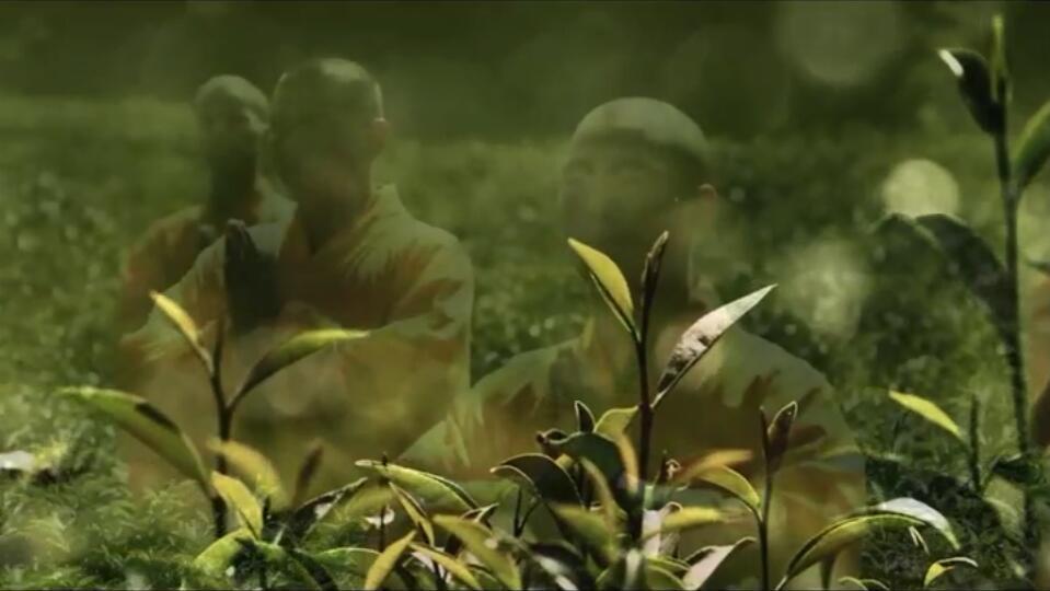 少林禅茶品牌宣传片