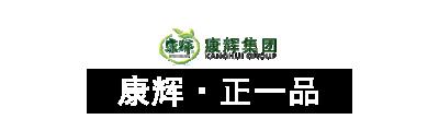 康辉正一品食品广告